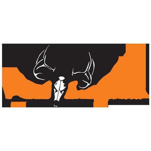 anilogics-icon